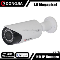 DJ-IPC-HD2303SHR Network 720P Waterproof Hot Selling In Japan CCTV Camera