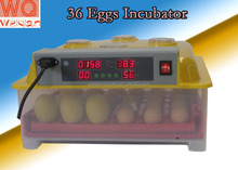 chicken egg incubator WQ-36 automatic incubator for poultry