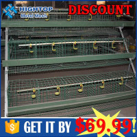 free samples big meat chicken cage which can hold 108 birds for wholesales