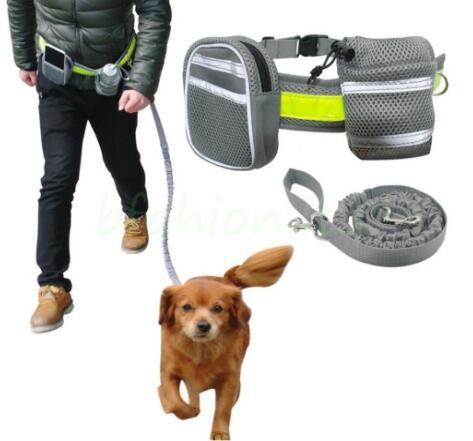 TAILUP No-pull harness running retractable leash magnetic dog collar