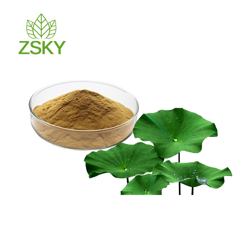 Manufacture Supply Natura and Pure Lotus Leaf Extract