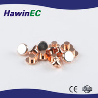 High Quality Electrical Contact Brass Rivets