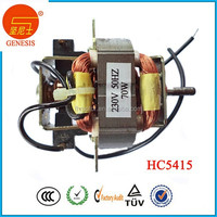Electric 120 volt hair dryer synchronous motor