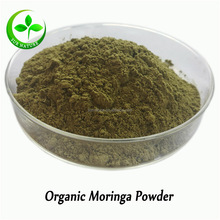 Chinese GMP manufacturer sell moringa leaf powder/moringa powder leaf