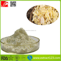 Top Quality Boswelia Serrata Extract Frankincense Extract