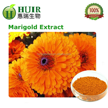 Free sample manufacture supple high quality wholesale supplements free shipping from Marigold extract/Cas No.144-6