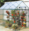 PE Galvanized Frame Garden Used Greenhouse for Sale