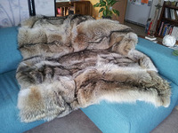 High quality Coyote Fur Blanket natural real fur rug genuine fur throw