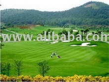 Ha Noi Golf Package 3D2N