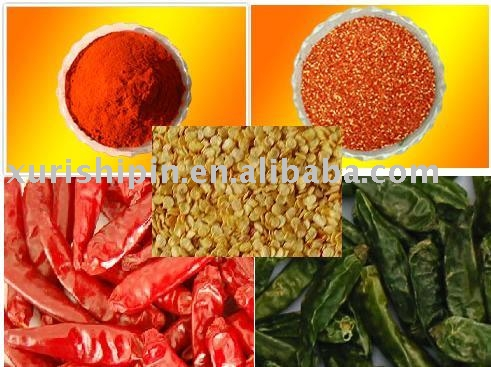 chilli and chilli processing products