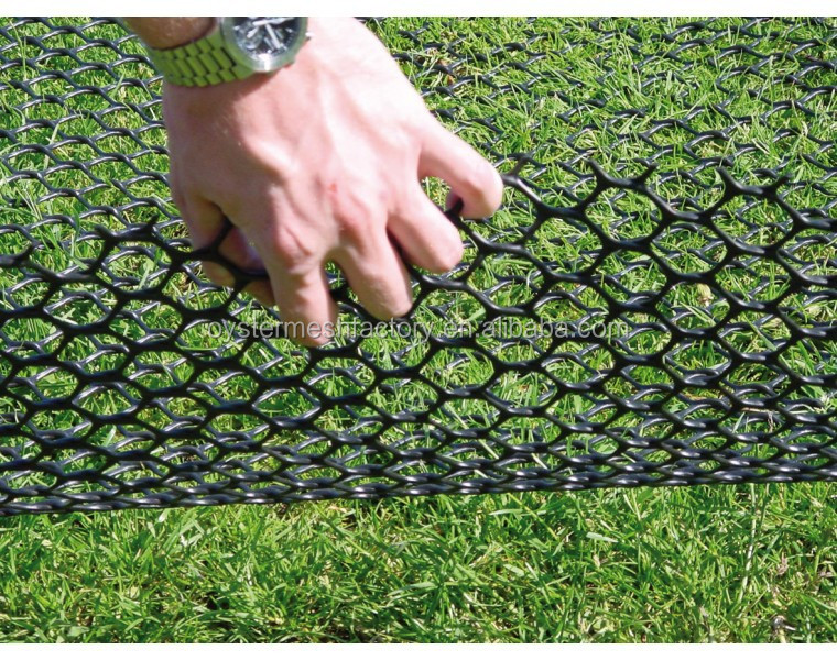 turf reinforcement mesh ,used for grass protection,made by HDPE Extruded Plastic Mesh