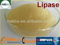 Detergent Additives Lipase enzymes