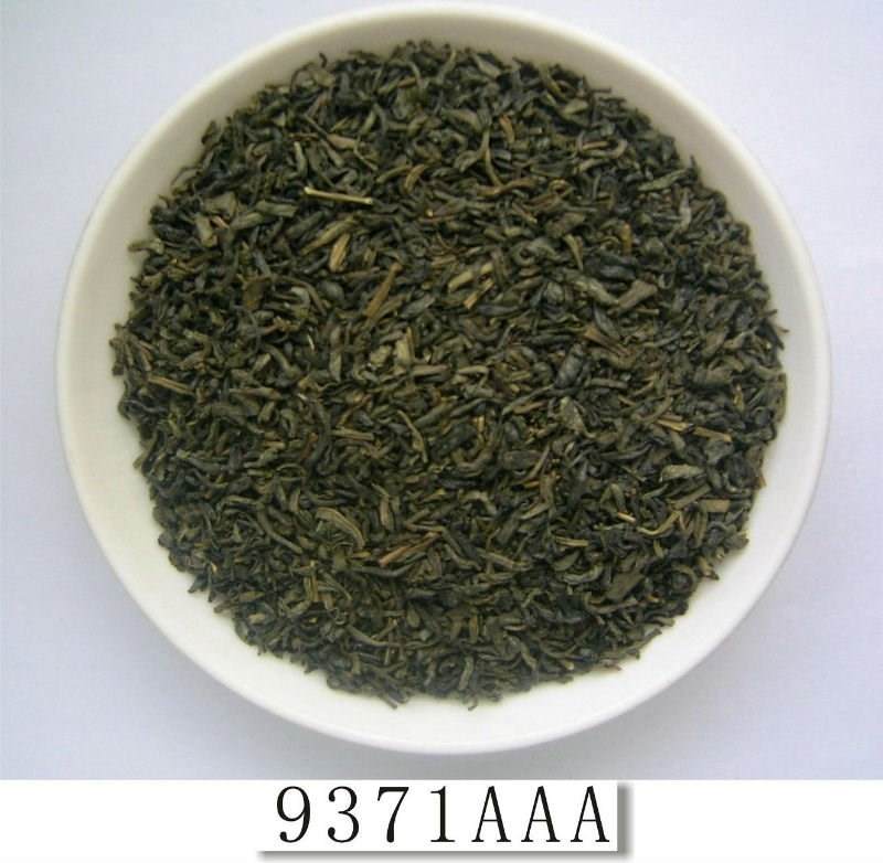 The vert wholesale high quality china green tea Chunmee 9371
