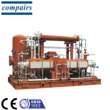 Natural gas compressor CNG fueling system conform to American Petroleum Institute standard API618/API11P