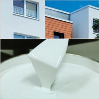 Acrylic House Waterproof White Primer Paint