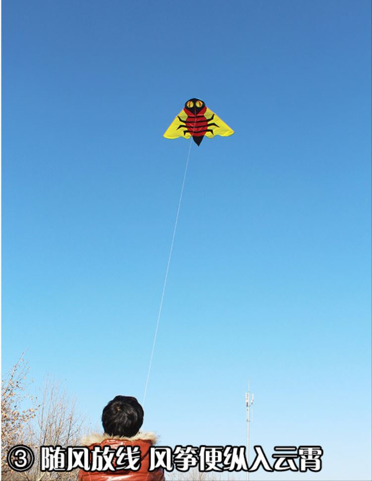 latest surfing kite