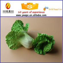 YIPAI Artificial Plastic Natural Touch Fruit And Vegetable Model