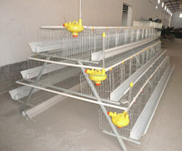cages for broiler chicken/ used chicken cage for sale /used rabbit cages for sale