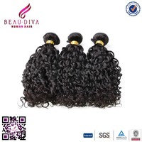 Retail Online Shopping Human Hair Weave Mongolian Curly Hair Weave Shelly Curl
