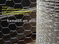 Galvanized hexagonal wire mesh but froom anping