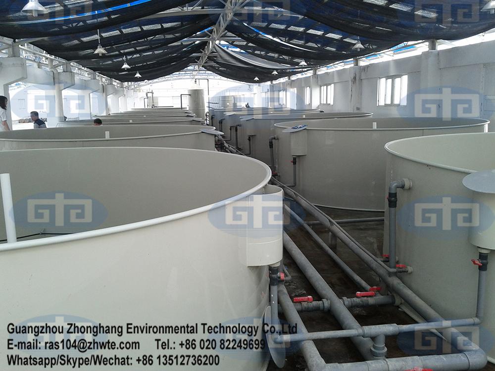 Indoor fish farm design for catfish fish farm buy indoor for Indoor fish farming