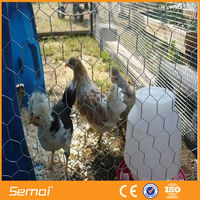 zinc wire hexagonal wire mesh/chain link wire mesh/bird cages