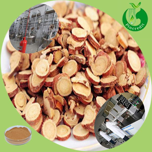 Glycyrrhiza glabra root glycyrrhiza glabra licorice root extract
