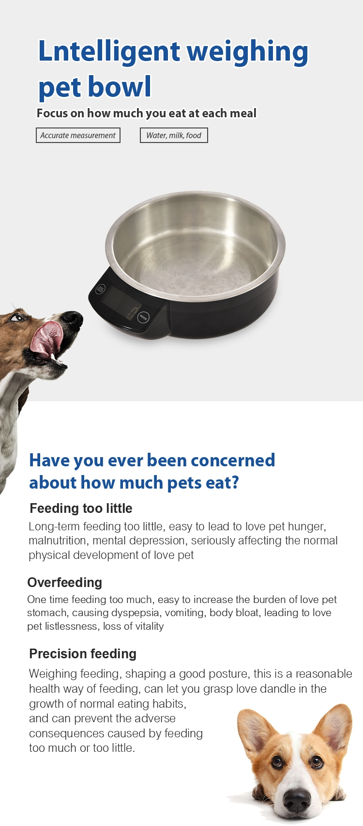 Tianyuan pet stainless steel sensor pet feeder dog and cat bowl,smart digital weighing bowl