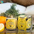 top1 trade assurance glass candle holders with stick lemon design
