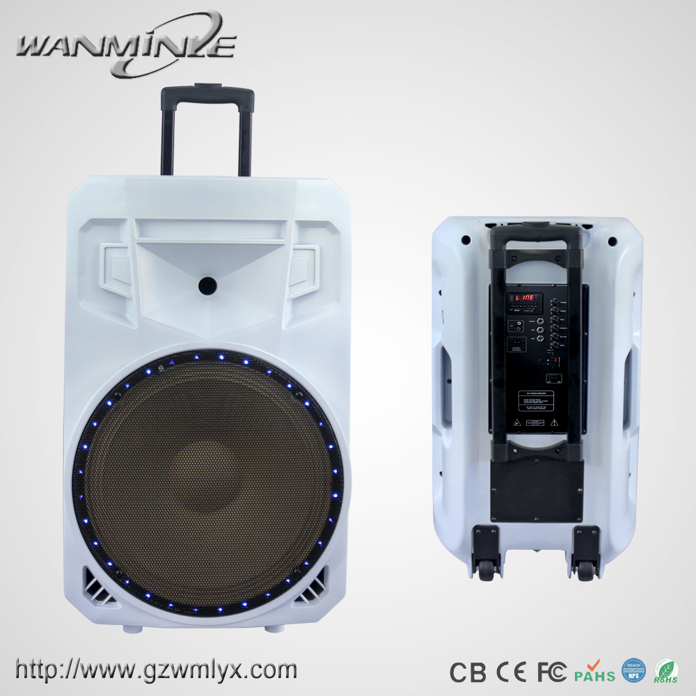 Top Tech Audio Speaker Portable 8inch USB Loud Speaker White Cabinet