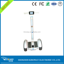 OEM Factory Wholesale Samsung Battery 15 inch tire 2 wheels Sports Outboard Motor smart balancing harley electric scooter