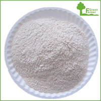 2016 new crop high quality onion powder