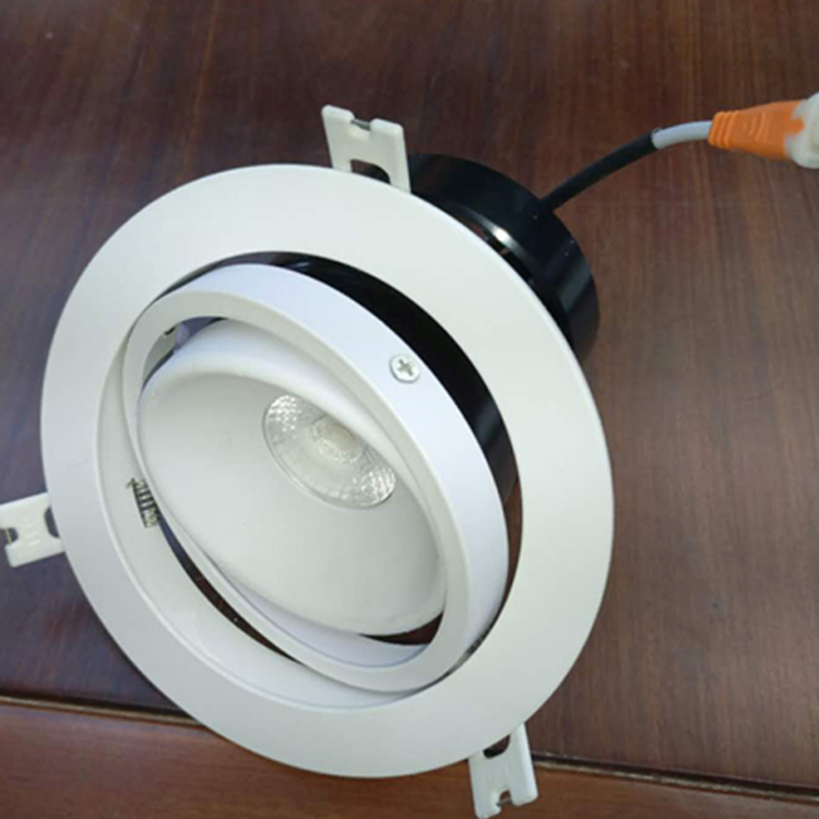 <strong>LED</strong> Light Source Adjustable 12W <strong>LED</strong> <strong>Downlight</strong>