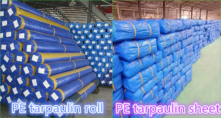 pe tarpaulin packing.jpg