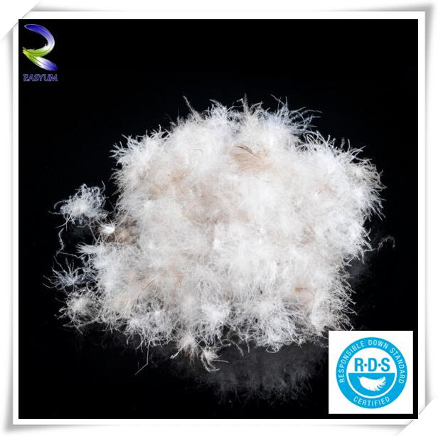 Natural raw 95% White Washed Goose Duck Down Feather