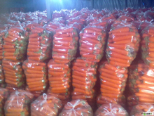 New Fresh Red Carrot with Best Quality& Price in 2015
