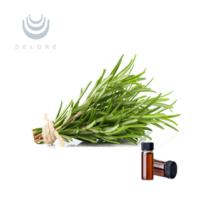 antioxidant natural 2.5%-60% Rosemary herb Extract liquid Carnosic acid