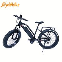 Factory Sell china bicycle electric electric bike electric mini bike for kids