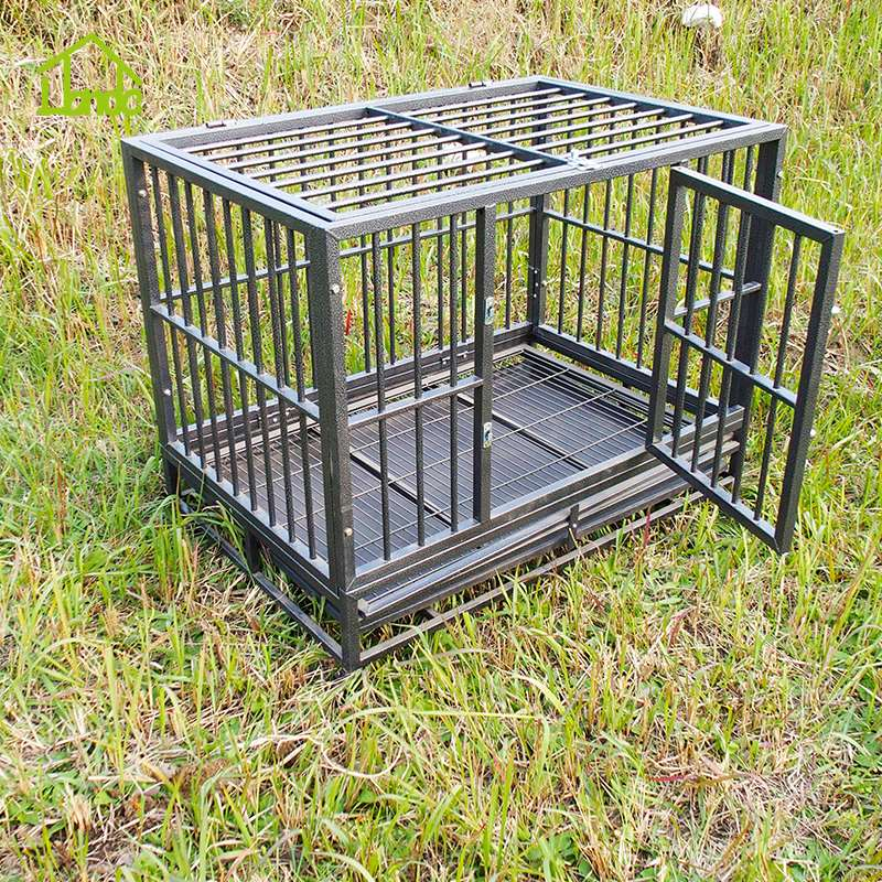 Outdoor Chain Link Iron Fence Dog Kennel And Runs
