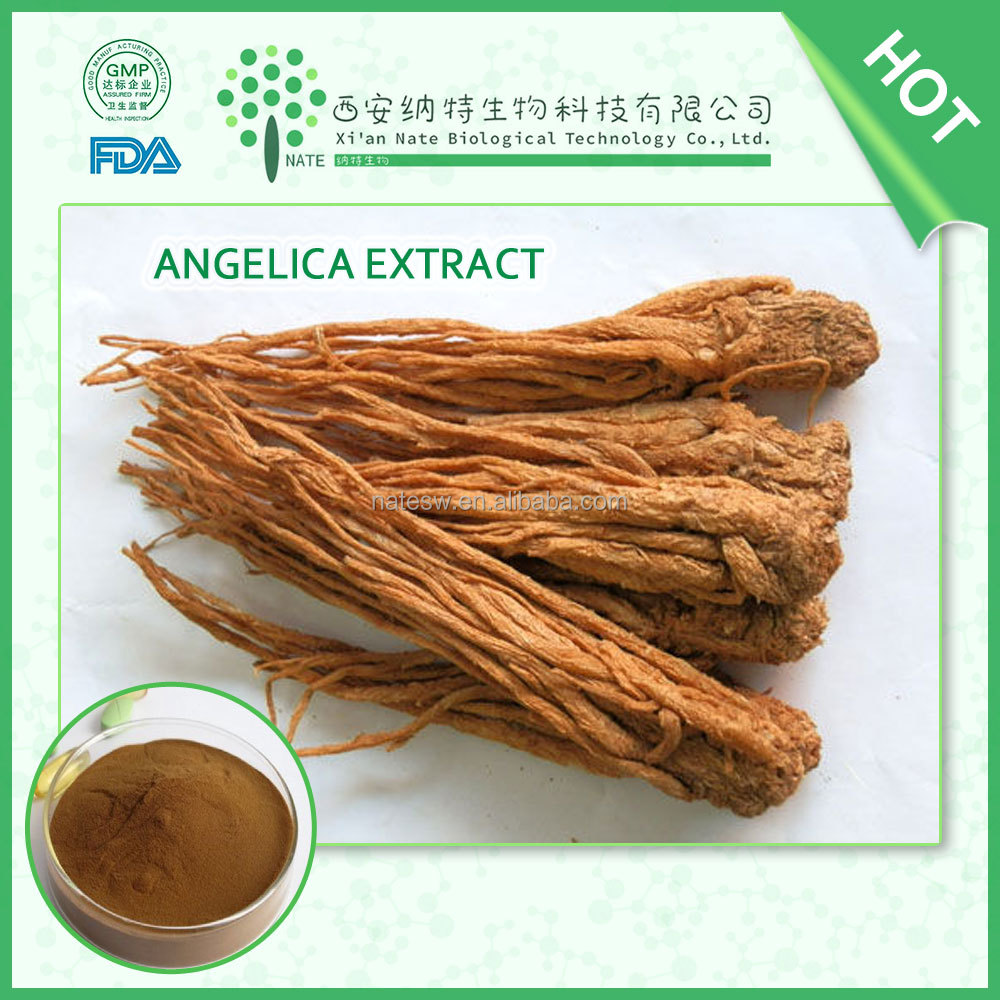 Factory supply Ligustilide Chinese Gingseng Chinese Dong Quai for lower blood pressure and blood fat