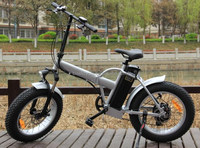 fat tyre mtb pedelec off road electric pocket bike