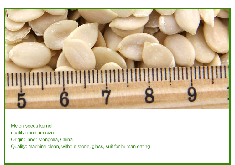 no hybrid watermelon seed kernels from China in bulk