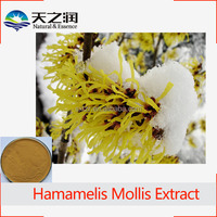 Witch Hazel Extract, Hamamelis mollis P.E., Hamamelis mollis Extract Powder
