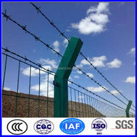 hot sale galvanized razor barbed wire mesh