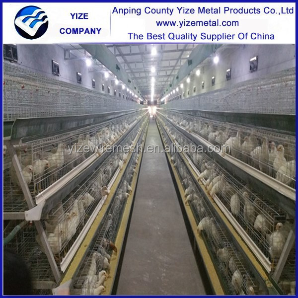 Chicken egg laying equipment in Ghana farm/poultry farm design with chicken cage