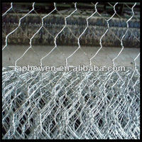 green pvc coated Chicken wire /Hexagonal wire netting