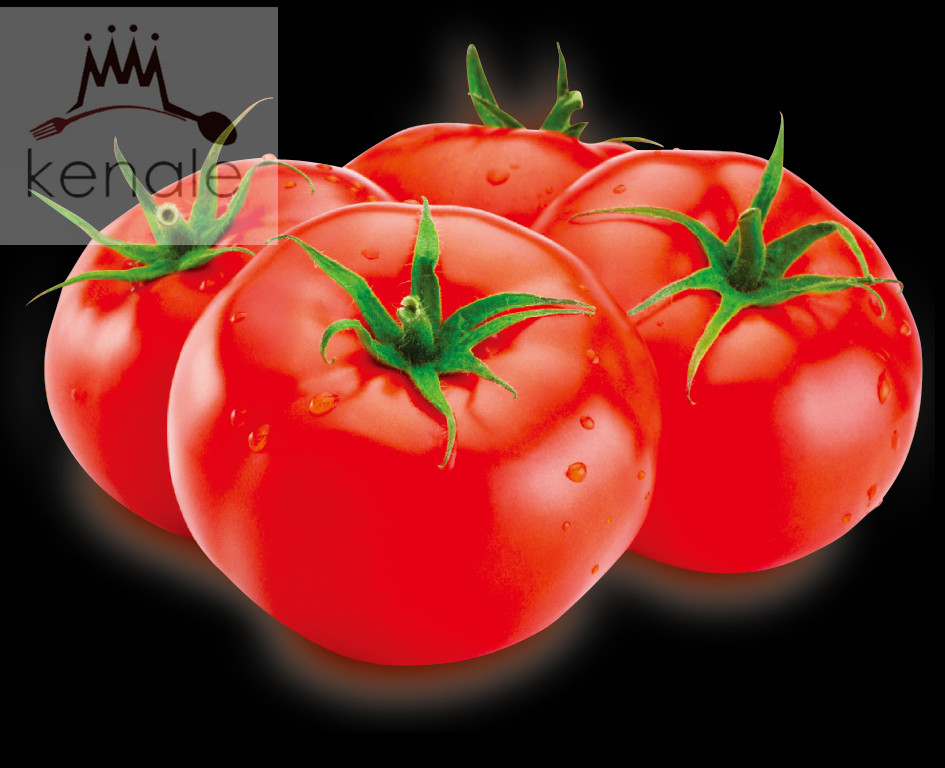 seasonings condiments competitive tomato paste price 210gX48tins