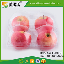 Plastic Fresh Apple Fruit Food Packaging Box With Cover