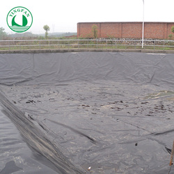 Waterproofing Polyethylene Membrane Price for Water conservancy project