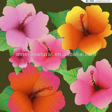 ISO&GMP factory Hibiscus Flower extract powder